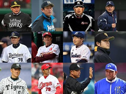 プロ野球セ・パ交流戦